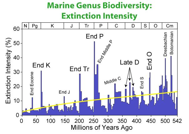 grafico eventi di estinzione di massa