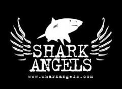 gli angeli degli squali