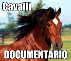 cavalli documentario