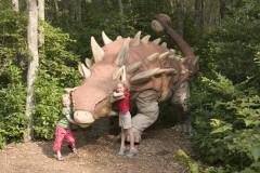 Dinosauri: documentari per bambini