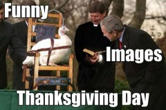 thanksgiving day giorno del ringraziamento immagini divertenti